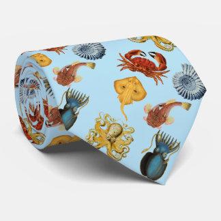 under havsbläckfisken snäckor, krabba. Aquablått Slips