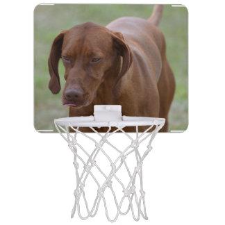 Underbar Vizsla hund Mini-Basketkorg