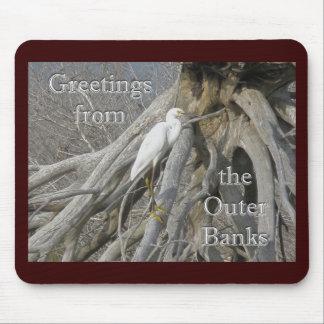 Underbar yttre banker för Egret (den alba ardeaen) Musmatta