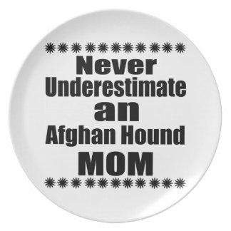 Underskatta aldrig den afghanska hundmamman tallrik