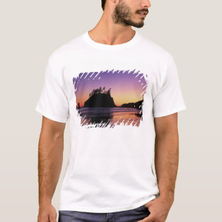 Understödja stranden på skymningen, OS:en NP, WA, Tee