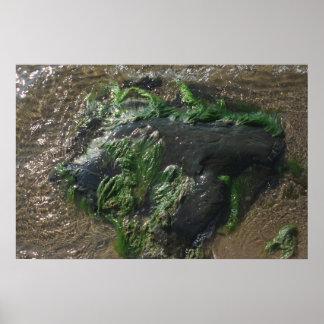 Undervattens- sten poster