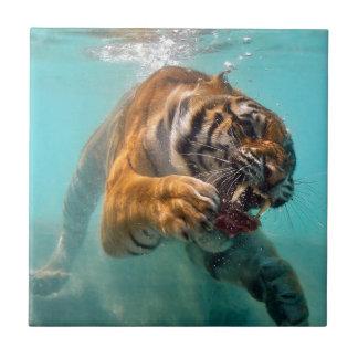 Undervattens- tiger kakelplatta av kerami