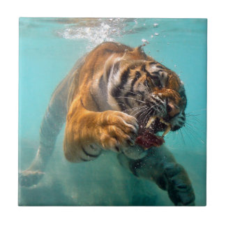 Undervattens- tiger liten kakelplatta