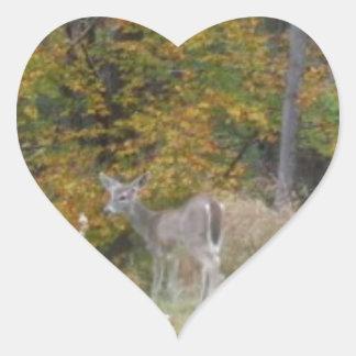 Ung Bambi hjort med nedgångtrees. Hjärtformat Klistermärke