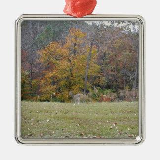 Ung Bambi hjort med nedgångtrees. Silverfärgad Fyrkantigt Julgransprydnad