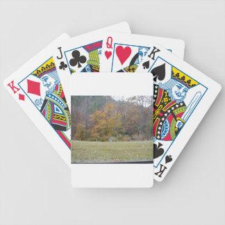Ung Bambi hjort med nedgångtrees. Spel Kort