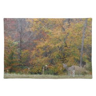 Ung Bambi hjort med nedgångtrees. Bordtabletter