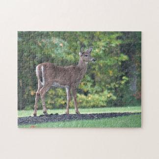 Ung hjort jigsaw puzzles