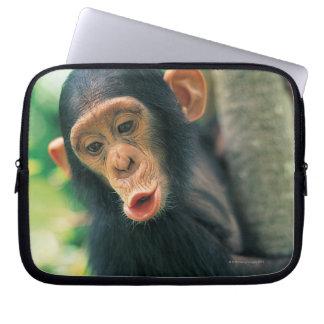 Ung schimpans (panorera grottmänniskor), laptop sleeve