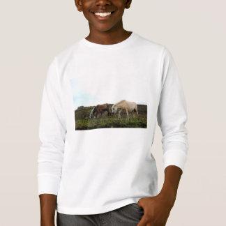 Unge för Dartmoor vildponnyer långa muff skjorta Tee Shirt
