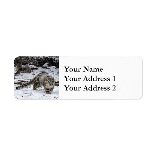 Unge för snöLeopard Returadress Etikett