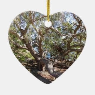 Unidentified träd på den Kalifornien kusten Julgransprydnad Keramik
