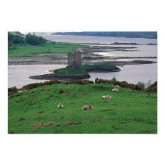 United Kingdom Skottland, Isle av Skye som är gamm Fototryck