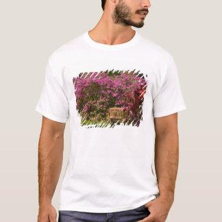 United States; South Carolina; Charleston; T-shirt