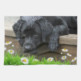 Uppskatta småsakerna - svart Labrador Kökshandduk