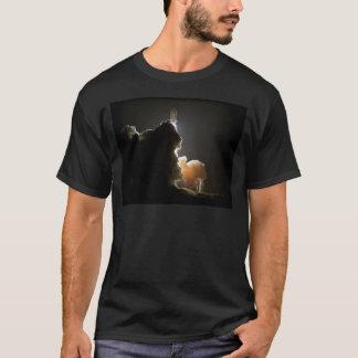 Upptäckt Tshirts