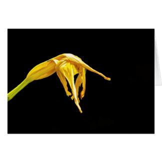 Urblektt blommakort OBS kort