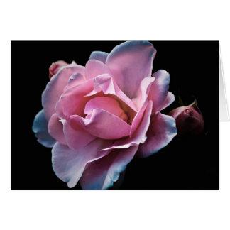 Ursnygg rosa ros på svart hälsningskort