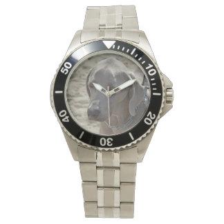 Ursnygga Weimaraner Armbandsur