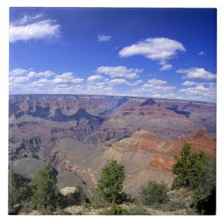 USA Arizona, grand Canyonnationalpark som är södra Kakelplatta