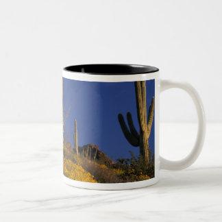 USA Arizona, organ leda i rör kaktusmedborgare 2 Två-Tonad Mugg