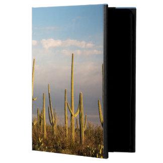 USA Arizona, Saguaronationalpark, Saguaro iPad Air Skal