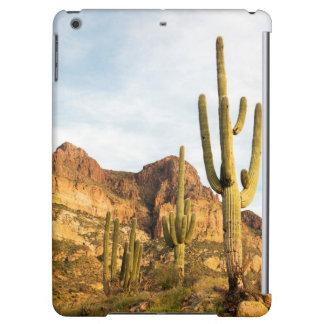 USA Arizona, Tonto nationalskog, Picketpost 2