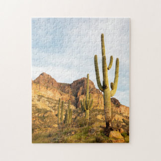 USA Arizona, Tonto nationalskog, Picketpost 2 Pussel