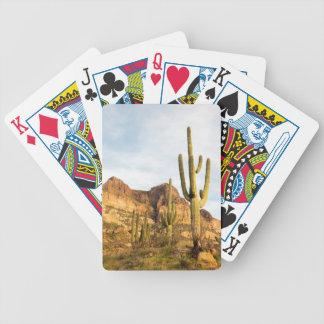 USA Arizona, Tonto nationalskog, Picketpost 2 Spelkort