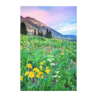 USA Colorado, krönad Butte. Landskap 2 Canvastryck