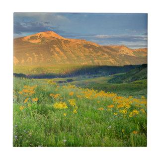 USA Colorado, krönad Butte. Landskap 3 Kakelplatta