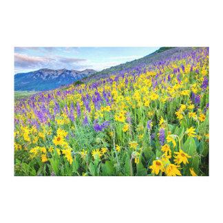 USA Colorado, krönad Butte. Landskap Canvastryck