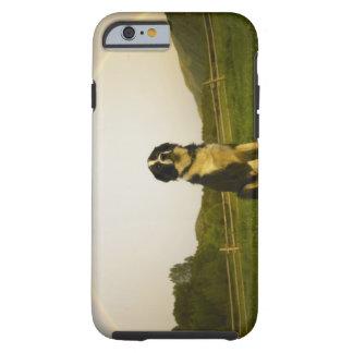 USA Colorado, nytt slott Tough iPhone 6 Case