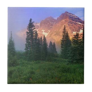 USA Colorado, Snowmass vildmark Kakelplatta