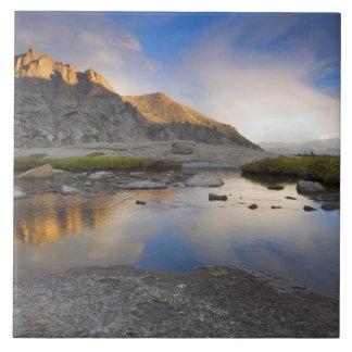 USA Colorado, stenigt berg NP. Kakelplatta