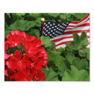 USA flagga och blommor Fototryck