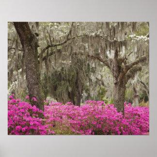 USA Georgia, Savannah, vår på historiskt Poster