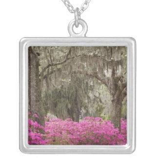 USA Georgia, Savannah, vår på historiskt Silverpläterat Halsband