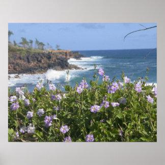 USA Hawaii, Kauai, nära Kapaa som är northwest Poster