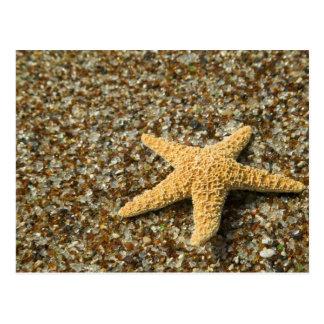 USA HI, Kauai, Glass strand med stjärnafisken Vykort