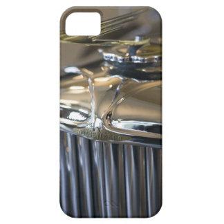 USA Indiana som är kastanjebrun: Binda med rep, iPhone 5 Hud