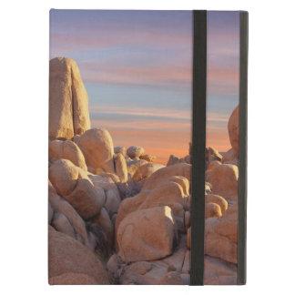 USA Kalifornien, nationalpark för Joshua träd Fodral För iPad Air