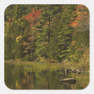 USA; Maine; Acadia NP. Nedgångreflexioner på 2 Fyrkantigt Klistermärke