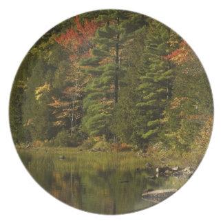 USA; Maine; Acadia NP. Nedgångreflexioner på 2 Tallrik