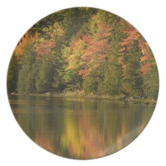 USA; Maine; Acadia NP. Nedgångreflexioner på Fest Tallrikar
