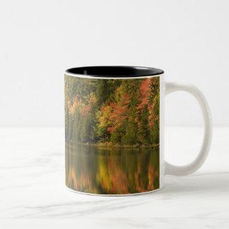 USA; Maine; Acadia NP. Nedgångreflexioner på Två-Tonad Mugg