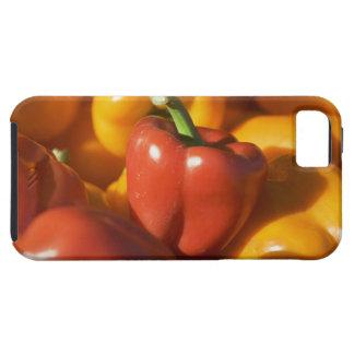 USA Massachusetts, Boston, spansk peppar Tough iPhone 5 Fodral
