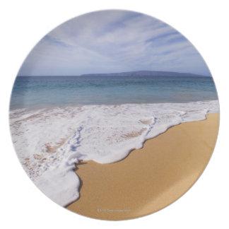 USA, Maui, Wailea, surfa och shoreline Tallrik