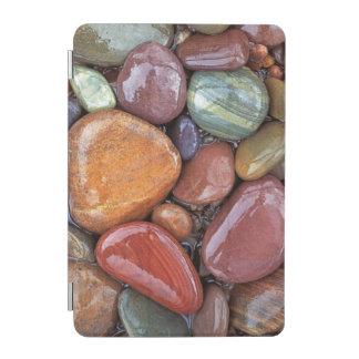 USA Montana, Clark Fork River, stenar 2 iPad Mini Skydd